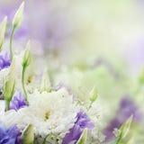 Brautblumenstrauß vom Weiß und vom Rosa stockfotos