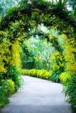 Brautbogenfußweg in einem botanischen Garten stockfoto
