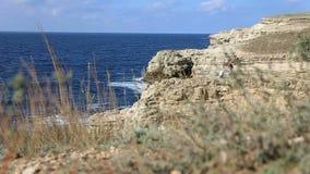 Brautbräutigam sind auf einer Klippe über dem Ozean stock video footage
