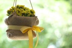 Brautduschblumen Stockfotografie