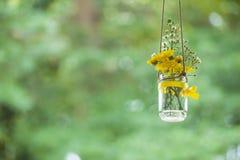Brautduschblumen Stockfoto