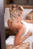 Brauthaarart Stockfotografie