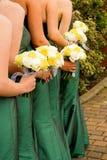 Brautjunfern Stockbild
