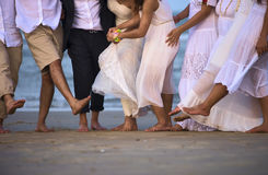 Brautpaare mit Freunden im natürlichen Hintergrund Lizenzfreie Stockfotos