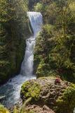 Brautschleier-Fälle, Oregon Stockbild