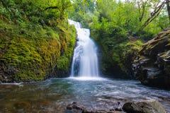 Brautschleierwasserfall, Oregon lizenzfreie stockbilder