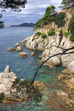brava costa de在西班牙tossa附近的landscape 3月 免版税库存照片
