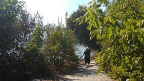Brave пожарная команда локализуя лесной пожар для того чтобы предотвратить строгое повреждение и сохранить природу сток-видео