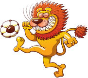 Brave lion kicking a soccer ball. Cool lion with a big orange mane, long tail and sharp teeth while clenching its eyes, teeth and fists and making a big effort Stock Images