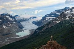 Vacation travel in Canadian Rockies. Brave man hiker on mountain top looking at view of Columbia Icefieds glacier and a moraine lake under stormy sky. Columbia royalty free stock photography