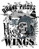 Brave pilot. S have long wings royalty free illustration