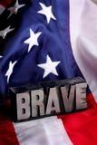 Brave y señale por medio de una bandera Fotografía de archivo libre de regalías