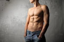 Brawny body Stock Image