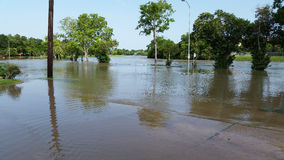 Brays Bayou Flood. The Brays Bayou overflowing its banks in Houston, Texas on May 26th, 2015 Royalty Free Stock Photo