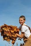 Brazado del muchacho de hojas Foto de archivo libre de regalías