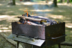 Brazier with burning firewood Stock Photo