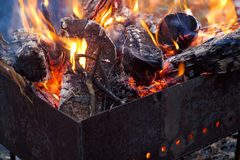 Brazier. Logs and branches burning in brazier Stock Photography