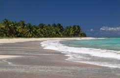 Brazil, Alagoas, Maceio beach. Brazil Alagoas State Maceio Deserted exotic tropical palm lined beach with turquoise ocean Stock Photo