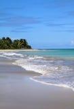 Brazil, Alagoas, Maceio beach. Brazil Alagoas State Maceio Deserted exotic tropical palm lined sandy beach with turquoise Atlantic Ocean Stock Photography