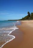 Brazil Alagoas Maceio deserted palm lined beach. Brazil Alagoas State Maceio idyllic tropical palm lined beach Stock Photography