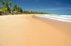 Brazil Beach. Barra Grande Beach, Bahia Estate, Brazil Royalty Free Stock Images