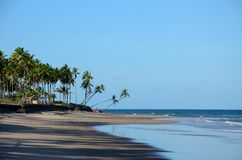 Brazil Beach. Barra Grande Beach, Bahia Estate, Brazil Stock Photos