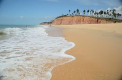 Brazil Beach. Beach located at Cumuruxatiba city, Bahia Estate, Brazil Stock Image