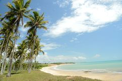Brazil Beach. Beach located at Cumuruxatiba city, Bahia Estate, Brazil Stock Photos