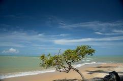 Brazil Beach. Moreira Beach located at Cumuruxatiba city, Bahia Estate, Brazil Stock Photo