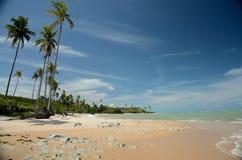 Brazil Beach. Moreira Beach located at Cumuruxatiba city, Bahia Estate, Brazil Royalty Free Stock Image