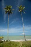 Brazil Beach. Moreira Beach located at Cumuruxatiba city, Bahia Estate, Brazil Stock Images