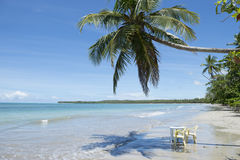 Brazil Beach Palm Tree Table and Chairs Stock Photography