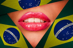 Brazil Royalty Free Stock Photos