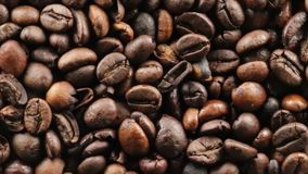 Brazil Bio Coffee beans. Brazil Bio Coffee for restaurant stock video