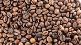 Brazil Bio Coffee beans. Brazil Bio Coffee for restaurant stock footage