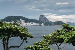 brazil copacabana de janeiro rio Royaltyfri Fotografi