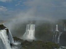 brazil faller iguassuen Arkivfoto