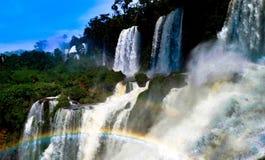brazil faller iguazuen Arkivbild