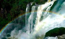 brazil faller iguazuen Royaltyfri Bild