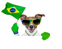 Brazil  fifa world cup  dog Royalty Free Stock Image