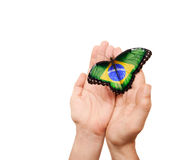Brazil flag butterfly. On a man's hands stock photography