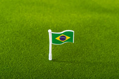 Brazil flag on grass Stock Photography