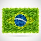 Brazil flag grass Stock Images