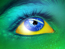 brazil flagga Stock Illustrationer