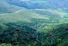 Brazil forest. Forest at valleys. Gandarela hill. Minas Gerais Estate, Brazil Stock Images