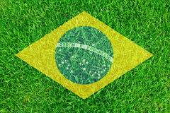 Brazil grass of Soccer championship 2014 Royalty Free Stock Photo