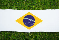 Brazil grass of Soccer championship 2014 Stock Photos