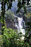 Brazil - Iguazu Stock Photo