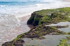 brazil kustlinje Arkivbilder
