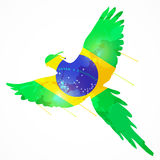 Brazil macaw flag. Brazilian bird macaw flying with brazil flag texture Stock Photography
